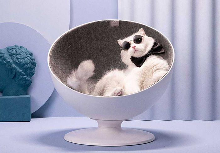 Enjoyable Boss Cat Bed Environmentally Friendly Elevated Rotating Ball Chair Customarchery Wood Chair Design Ideas Customarcherynet