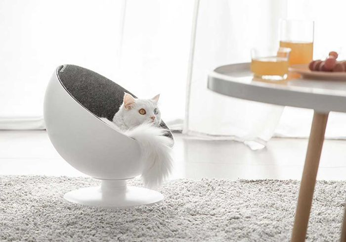 Peachy Boss Cat Bed Environmentally Friendly Elevated Rotating Ball Chair Customarchery Wood Chair Design Ideas Customarcherynet