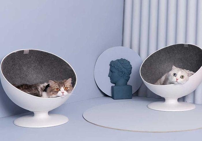 Prime Boss Cat Bed Environmentally Friendly Elevated Rotating Ball Chair Customarchery Wood Chair Design Ideas Customarcherynet